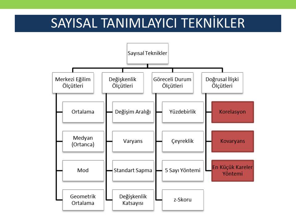 SAYISAL TANIMLAYICI TEKNİKLER