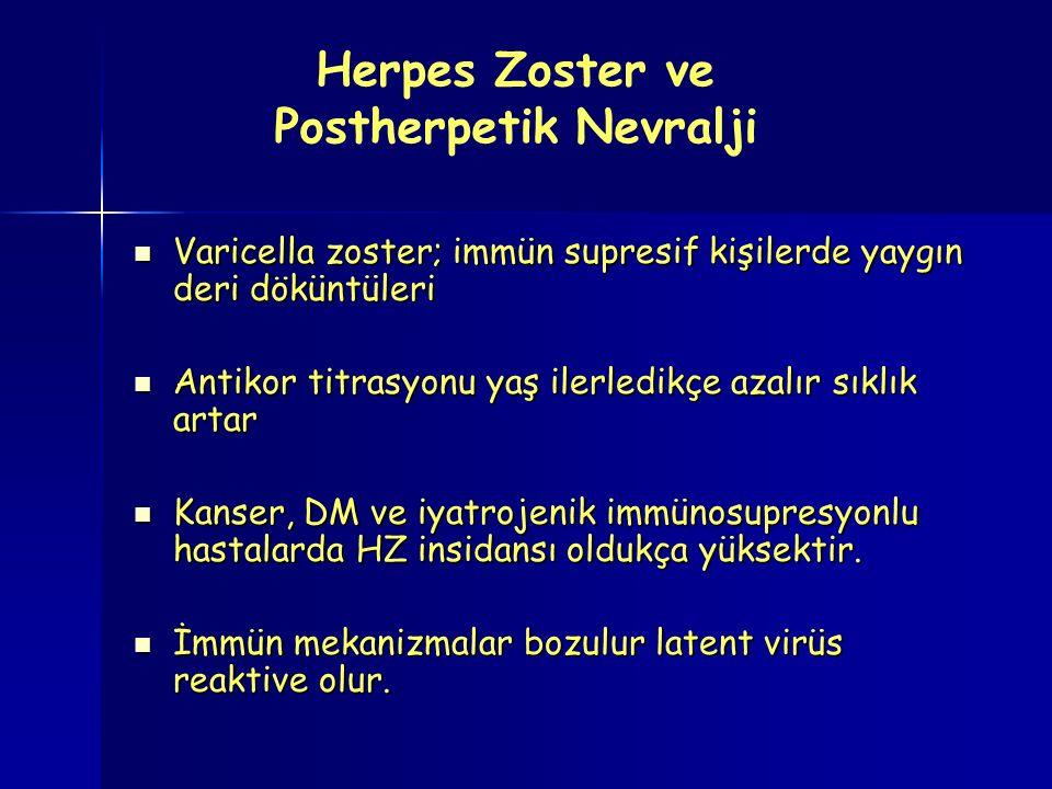 Herpes Zoster ve Postherpetik Nevralji Varicella zoster; immün supresif kişilerde yaygın deri döküntüleri Varicella zoster; immün supresif kişilerde yaygın deri döküntüleri Antikor titrasyonu yaş ilerledikçe azalır sıklık artar Antikor titrasyonu yaş ilerledikçe azalır sıklık artar Kanser, DM ve iyatrojenik immünosupresyonlu hastalarda HZ insidansı oldukça yüksektir.