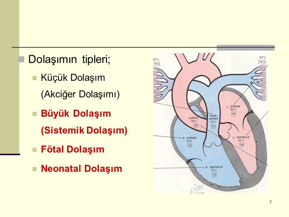 3 Dolaşımın tipleri; Küçük Dolaşım (Akciğer Dolaşımı) Büyük Dolaşım (Sistemik Dolaşım) Fötal Dolaşım Neonatal Dolaşım