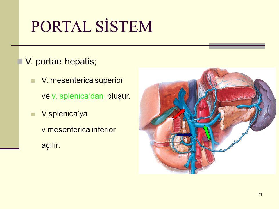 71 PORTAL SİSTEM V. portae hepatis; V. mesenterica superior ve v. splenica'dan oluşur. V.splenica'ya v.mesenterica inferior açılır.