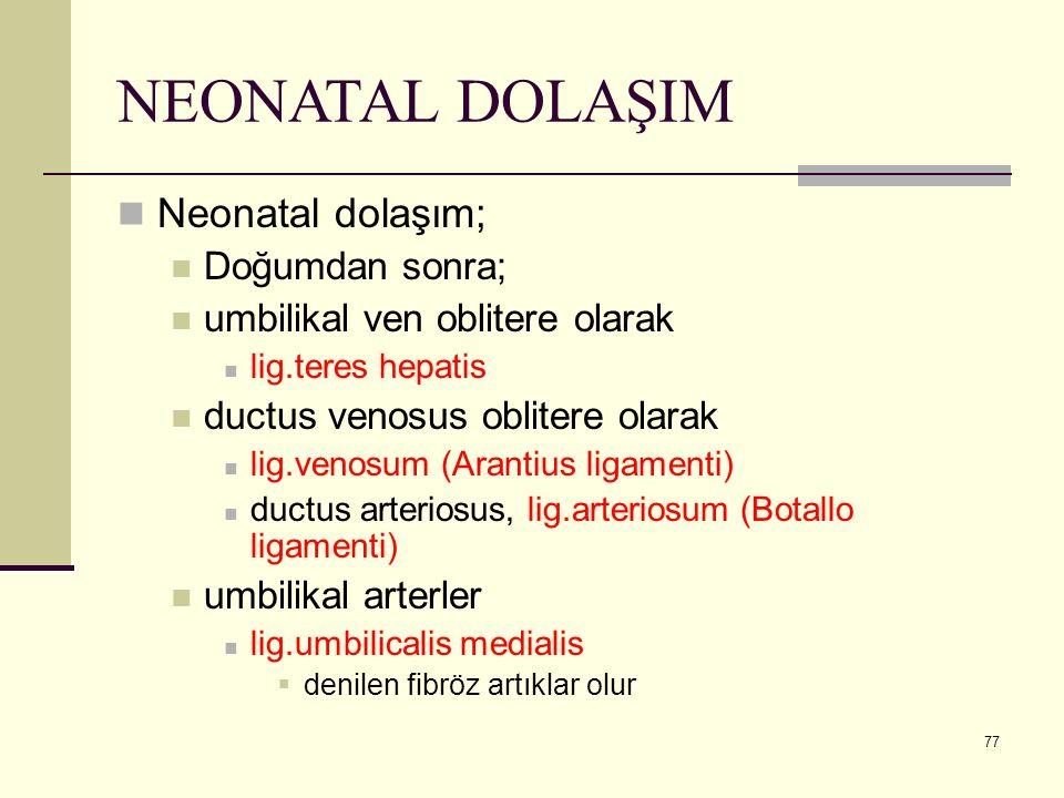 77 NEONATAL DOLAŞIM Neonatal dolaşım; Doğumdan sonra; umbilikal ven oblitere olarak lig.teres hepatis ductus venosus oblitere olarak lig.venosum (Aran