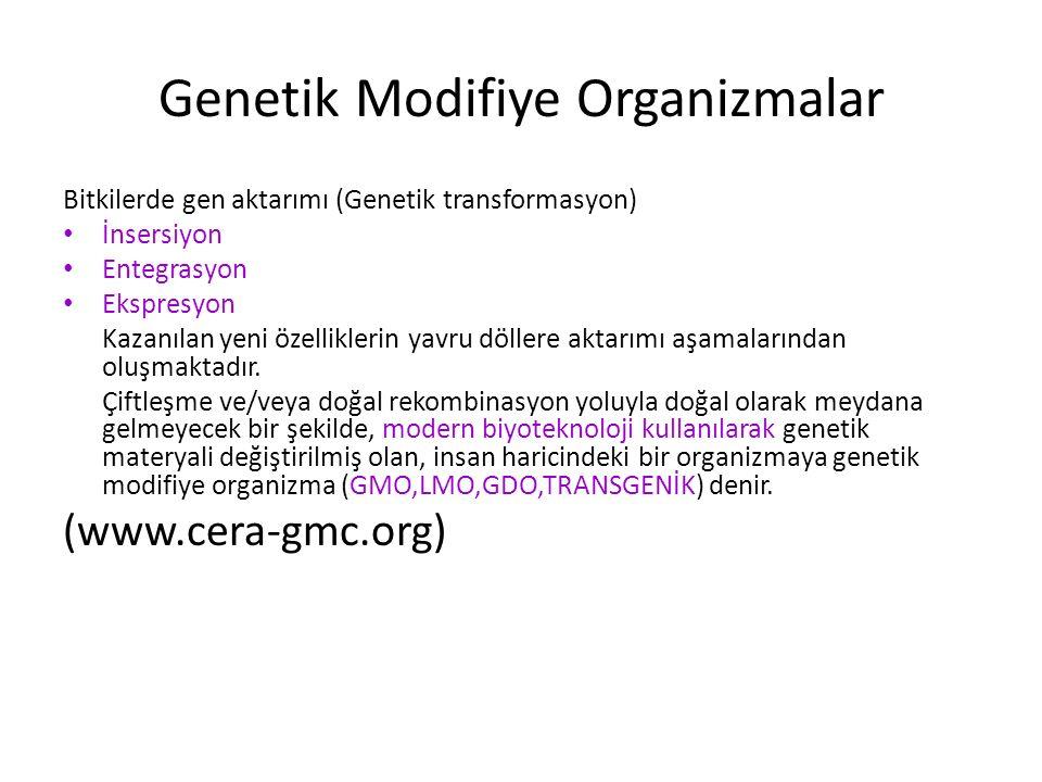 Genetik Modifiye Organizmalar Bitkilerde gen aktarımı (Genetik transformasyon) İnsersiyon Entegrasyon Ekspresyon Kazanılan yeni özelliklerin yavru döl