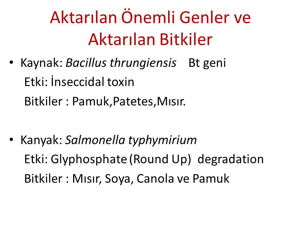Aktarılan Önemli Genler ve Aktarılan Bitkiler Kaynak: Bacillus thrungiensis Bt geni Etki: İnseccidal toxin Bitkiler : Pamuk,Patetes,Mısır. Kanyak: Sal