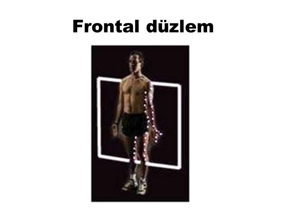Sagital eksen,frontal düzlemdeki hareketler