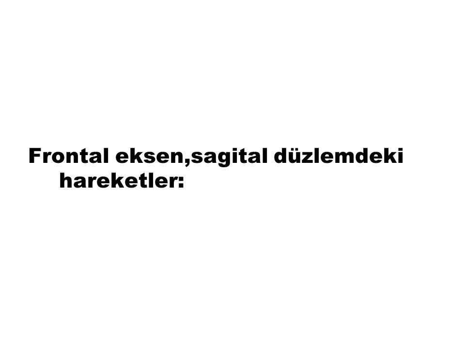 C-vertikal (longitudinal) eksen