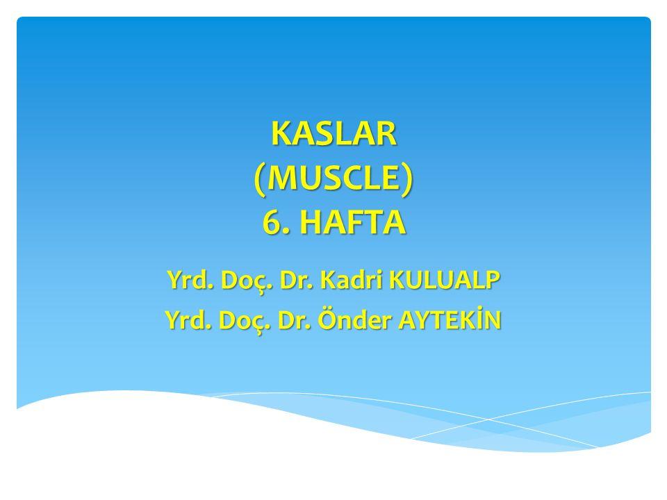 KASLAR (MUSCLE) 6. HAFTA Yrd. Doç. Dr. Kadri KULUALP Yrd. Doç. Dr. Önder AYTEKİN