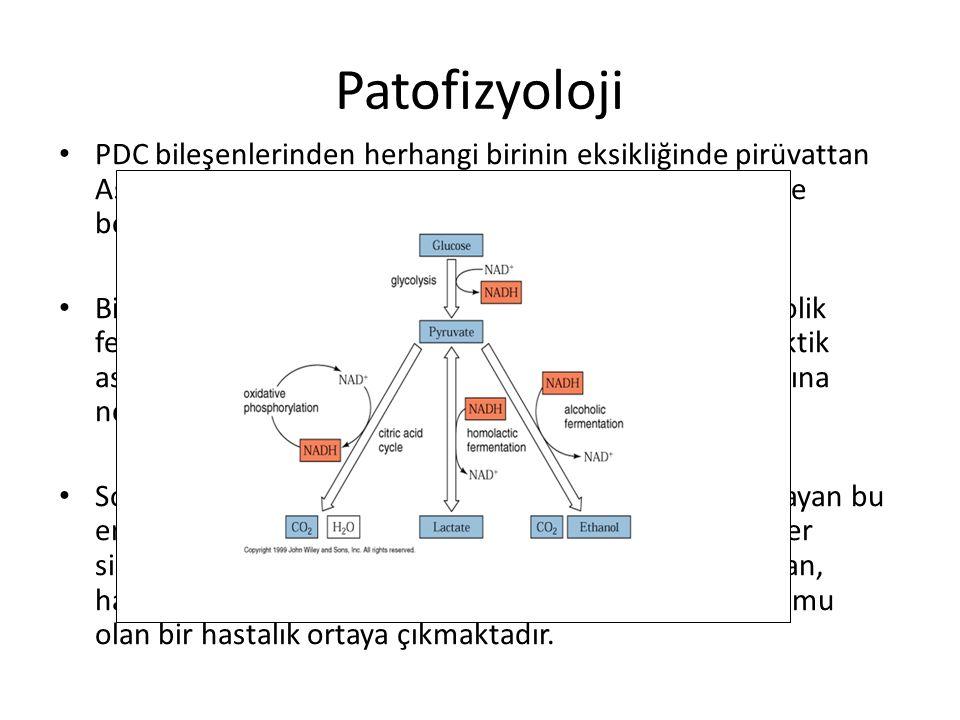 Patofizyoloji PDC bileşenlerinden herhangi birinin eksikliğinde pirüvattan Asetil KoA oluşumu ve dolayısıyla sitrik asit döngüsü de bozmaktadır. Birik