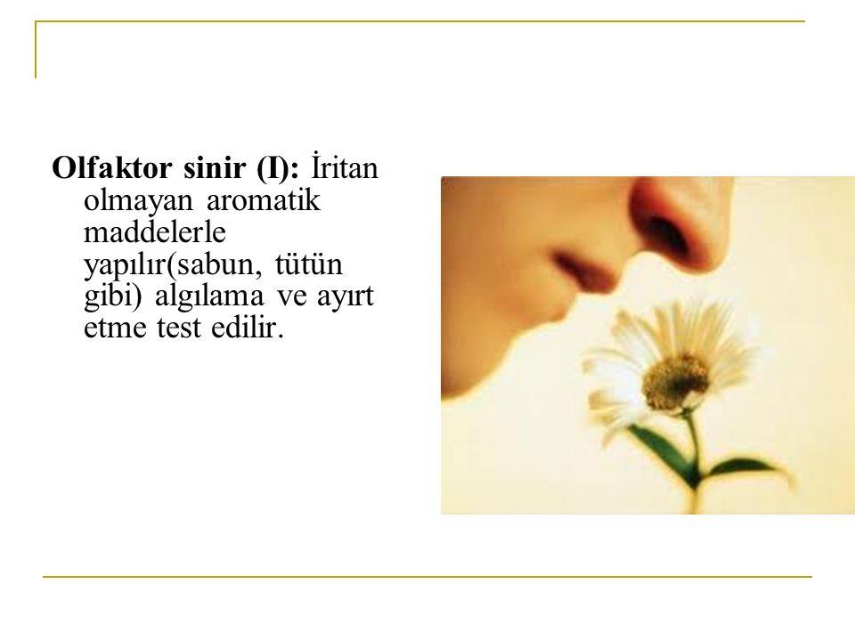 Olfaktor sinir (I): İritan olmayan aromatik maddelerle yapılır(sabun, tütün gibi) algılama ve ayırt etme test edilir.