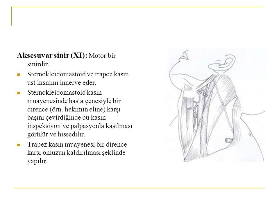 Aksesuvar sinir (XI): Motor bir sinirdir. Sternokleidomastoid ve trapez kasın üst kısmını innerve eder. Sternokleidomastoid kasın muayenesinde hasta ç