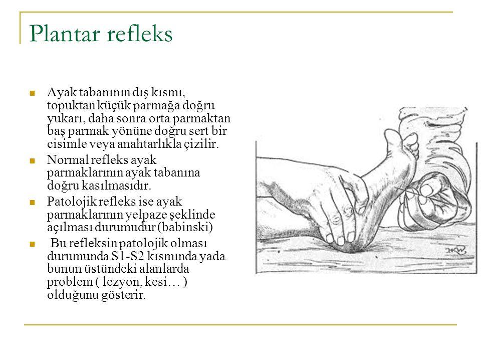 Plantar refleks Ayak tabanının dış kısmı, topuktan küçük parmağa doğru yukarı, daha sonra orta parmaktan baş parmak yönüne doğru sert bir cisimle veya