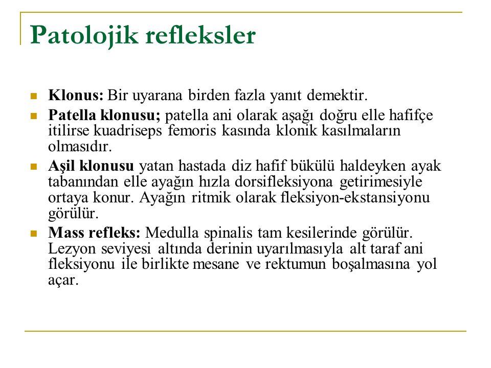 Patolojik refleksler Klonus: Bir uyarana birden fazla yanıt demektir. Patella klonusu; patella ani olarak aşağı doğru elle hafifçe itilirse kuadriseps