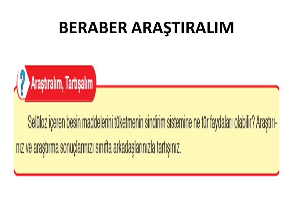 BERABER ARAŞTIRALIM