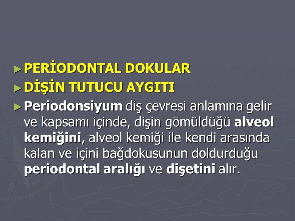 ► PERİODONTAL DOKULAR ► DİŞİN TUTUCU AYGITI ► Periodonsiyum diş çevresi anlamına gelir ve kapsamı içinde, dişin gömüldüğü alveol kemiğini, alveol kemiği ile kendi arasında kalan ve içini bağdokusunun doldurduğu periodontal aralığı ve dişetini alır.