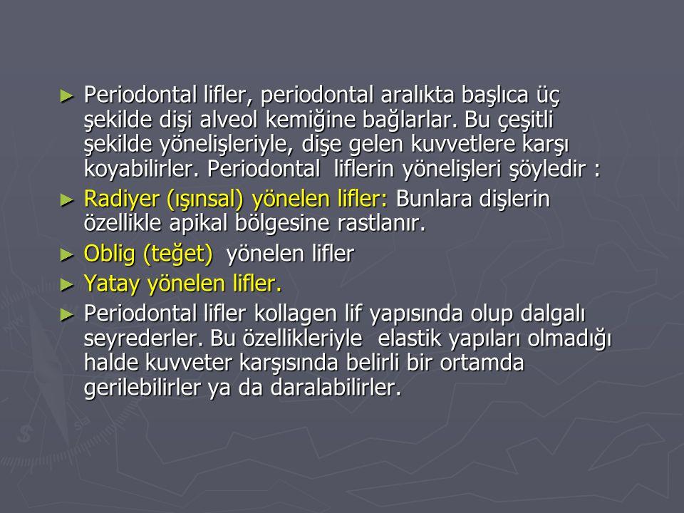 ► Periodontal lifler, periodontal aralıkta başlıca üç şekilde dişi alveol kemiğine bağlarlar.