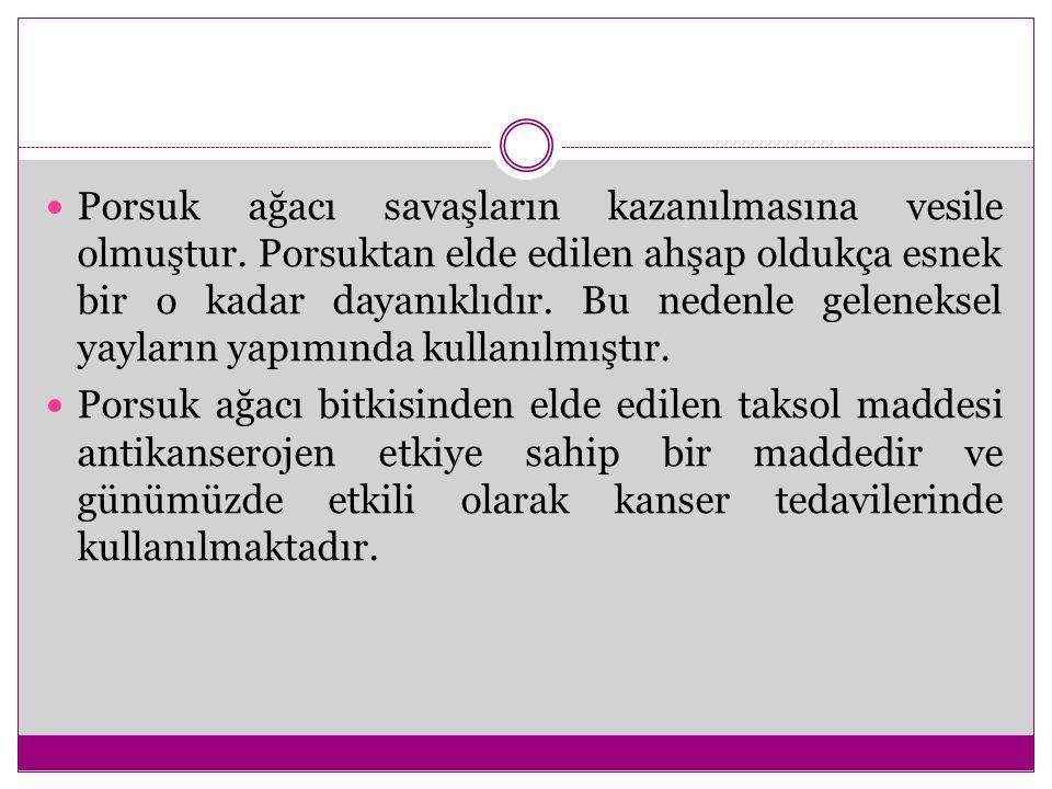 Türkiye de Porsuk ağacının nesli tehlikede olup, tohumdan porsuk ağacı yetiştirme oldukça zordur.