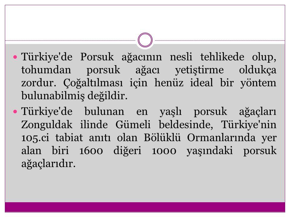 Türkiye'de Porsuk ağacının nesli tehlikede olup, tohumdan porsuk ağacı yetiştirme oldukça zordur. Çoğaltılması için henüz ideal bir yöntem bulunabilmi