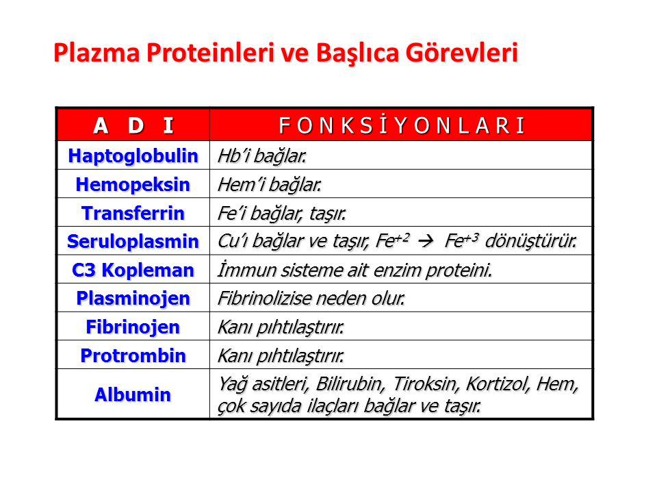 Plazma Proteinleri ve Başlıca Görevleri A D I F O N K S İ Y O N L A R I Haptoglobulin Hb'i bağlar.