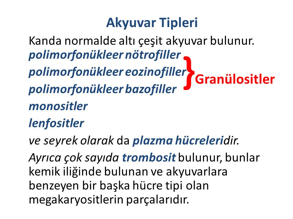 Akyuvar Tipleri Kanda normalde altı çeşit akyuvar bulunur. polimorfonükleer nötrofiller polimorfonükleer eozinofiller polimorfonükleer bazofiller mono