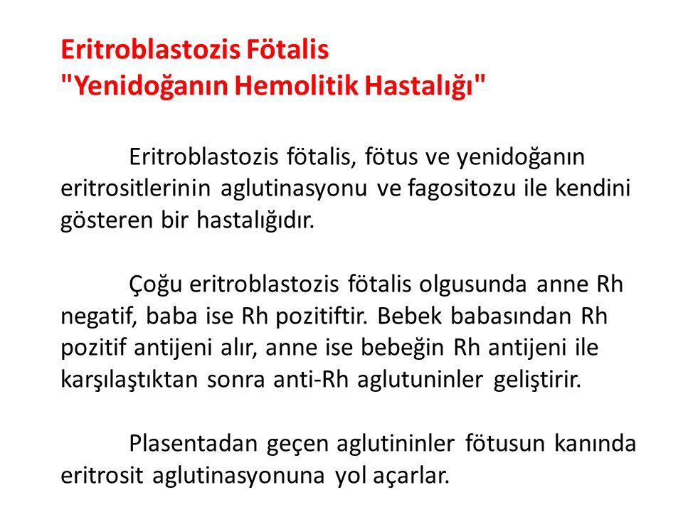 Eritroblastozis Fötalis Yenidoğanın Hemolitik Hastalığı Eritroblastozis fötalis, fötus ve yenidoğanın eritrositlerinin aglutinasyonu ve fagositozu ile kendini gösteren bir hastalığıdır.