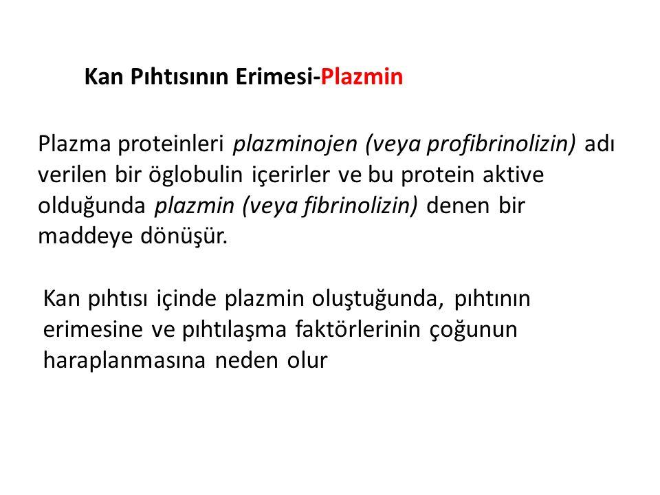 Kan Pıhtısının Erimesi-Plazmin Plazma proteinleri plazminojen (veya profibrinolizin) adı verilen bir öglobulin içerirler ve bu protein aktive olduğunda plazmin (veya fibrinolizin) denen bir maddeye dönüşür.