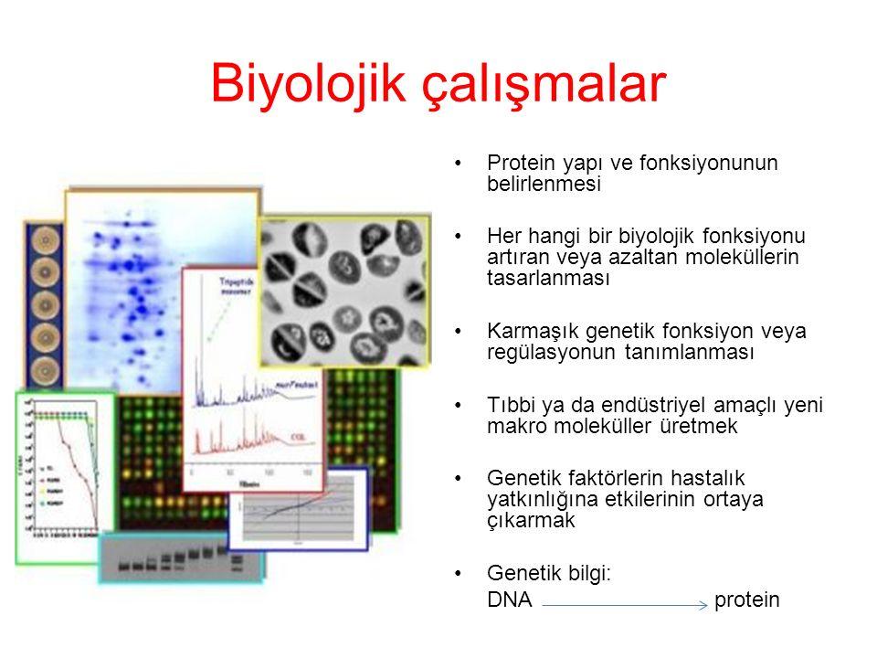 Biyolojik çalışmalar Protein yapı ve fonksiyonunun belirlenmesi Her hangi bir biyolojik fonksiyonu artıran veya azaltan moleküllerin tasarlanması Karmaşık genetik fonksiyon veya regülasyonun tanımlanması Tıbbi ya da endüstriyel amaçlı yeni makro moleküller üretmek Genetik faktörlerin hastalık yatkınlığına etkilerinin ortaya çıkarmak Genetik bilgi: DNA protein