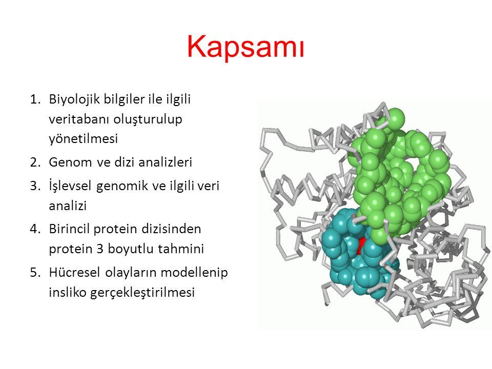 Kapsamı 1.Biyolojik bilgiler ile ilgili veritabanı oluşturulup yönetilmesi 2.Genom ve dizi analizleri 3.İşlevsel genomik ve ilgili veri analizi 4.Birincil protein dizisinden protein 3 boyutlu tahmini 5.Hücresel olayların modellenip insliko gerçekleştirilmesi