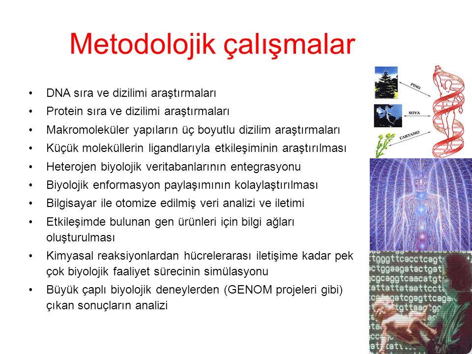 Metodolojik çalışmalar DNA sıra ve dizilimi araştırmaları Protein sıra ve dizilimi araştırmaları Makromoleküler yapıların üç boyutlu dizilim araştırma
