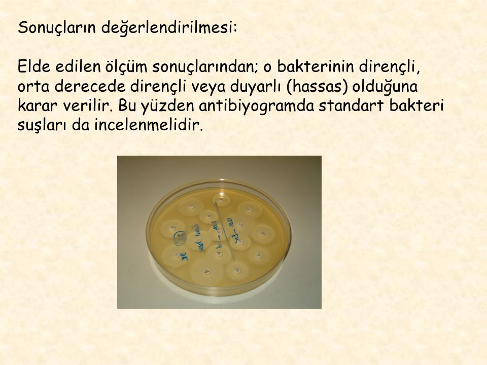Sonuçların değerlendirilmesi: Elde edilen ölçüm sonuçlarından; o bakterinin dirençli, orta derecede dirençli veya duyarlı (hassas) olduğuna karar veri