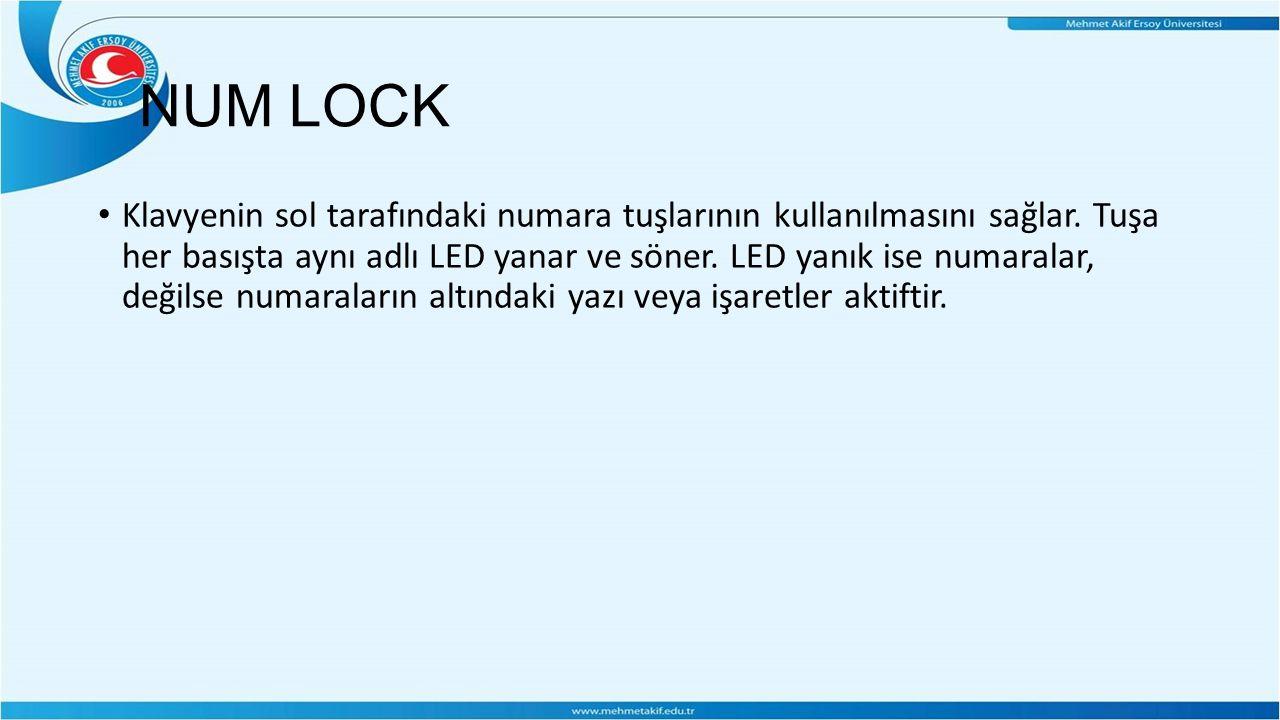 NUM LOCK Klavyenin sol tarafındaki numara tuşlarının kullanılmasını sağlar.