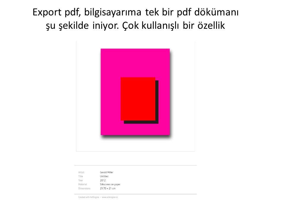 Export pdf, bilgisayarıma tek bir pdf dökümanı şu şekilde iniyor. Çok kullanışlı bir özellik