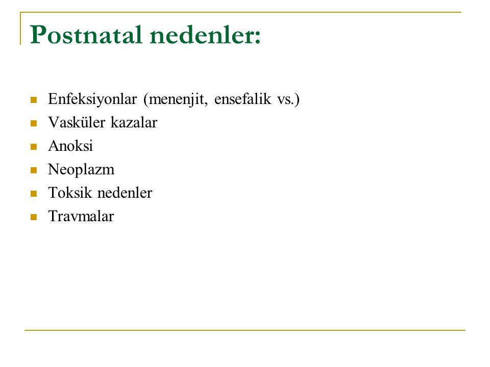 Postnatal nedenler: Enfeksiyonlar (menenjit, ensefalik vs.) Vasküler kazalar Anoksi Neoplazm Toksik nedenler Travmalar