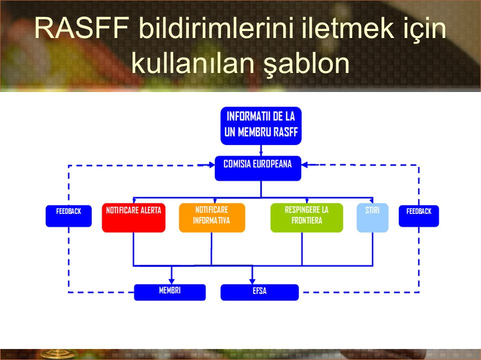 RASFF bildirimlerini iletmek için kullanılan şablon