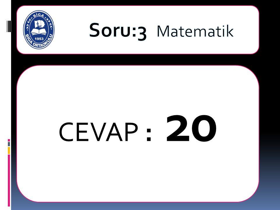 CEVAP : 20
