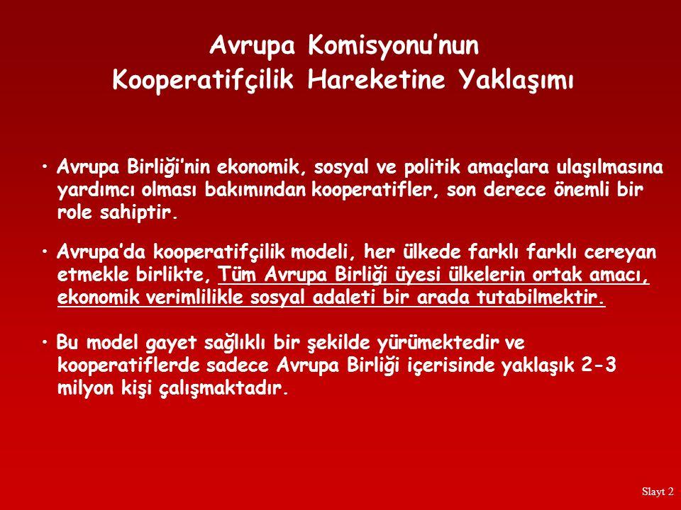 Türkiye'de kooperatifler için, devlete bağımlı olmayan, bağımsız bir denetim yaptırma zorunluluğunun olmaması konusunda da kaygılarım oluştu.