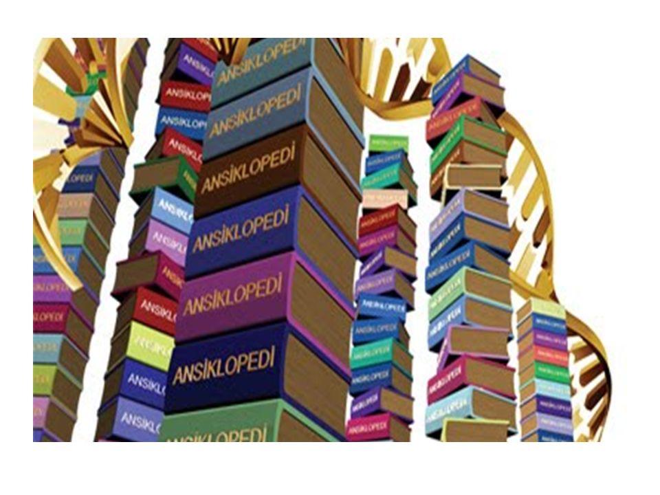 19. Bilgi ve becerinin güvence altına alınması ilkesi B ilgi ve beceriler kitap, ses ve görüntü kayıt ortamları sayesinde güvence altına alınmıştır. B
