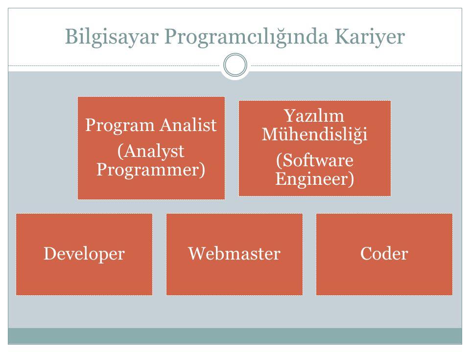 Bilgisayar Programcılığında Kariyer Program Analist (Analyst Programmer) Yazılım Mühendisliği (Software Engineer) DeveloperWebmasterCoder
