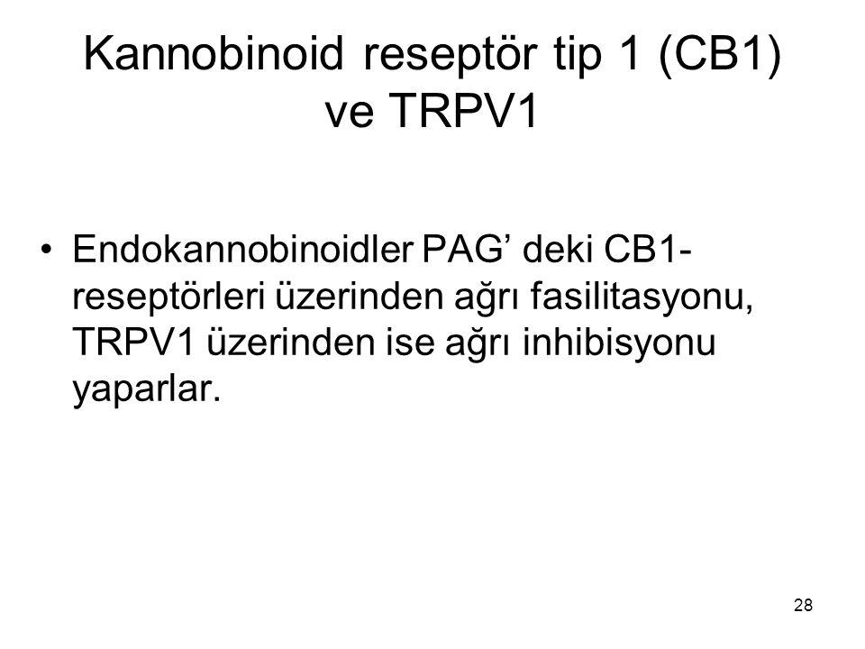 28 Kannobinoid reseptör tip 1 (CB1) ve TRPV1 Endokannobinoidler PAG' deki CB1- reseptörleri üzerinden ağrı fasilitasyonu, TRPV1 üzerinden ise ağrı inh