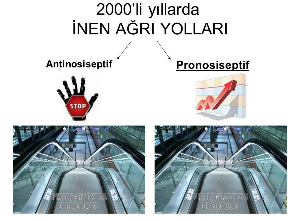 5 2000'li yıllarda İNEN AĞRI YOLLARI Antinosiseptif Pronosiseptif