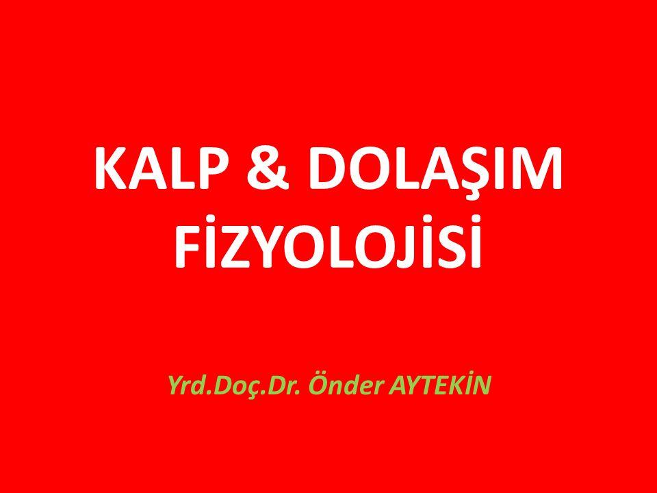 KALP & DOLAŞIM FİZYOLOJİSİ Yrd.Doç.Dr. Önder AYTEKİN