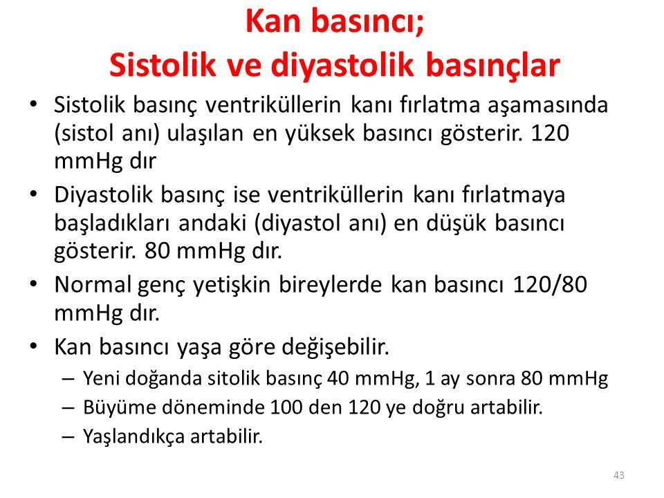 43 Kan basıncı; Sistolik ve diyastolik basınçlar Sistolik basınç ventriküllerin kanı fırlatma aşamasında (sistol anı) ulaşılan en yüksek basıncı göste