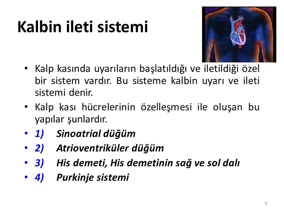 Kalbin ileti sistemi 9 Kalp kasında uyarıların başlatıldığı ve iletildiği özel bir sistem vardır. Bu sisteme kalbin uyarı ve ileti sistemi denir. Kalp