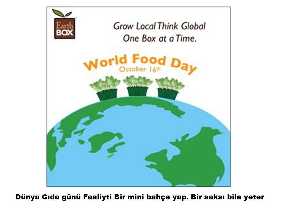 Dünya Gıda günü Faaliyti Bir mini bahçe yap. Bir saksı bile yeter