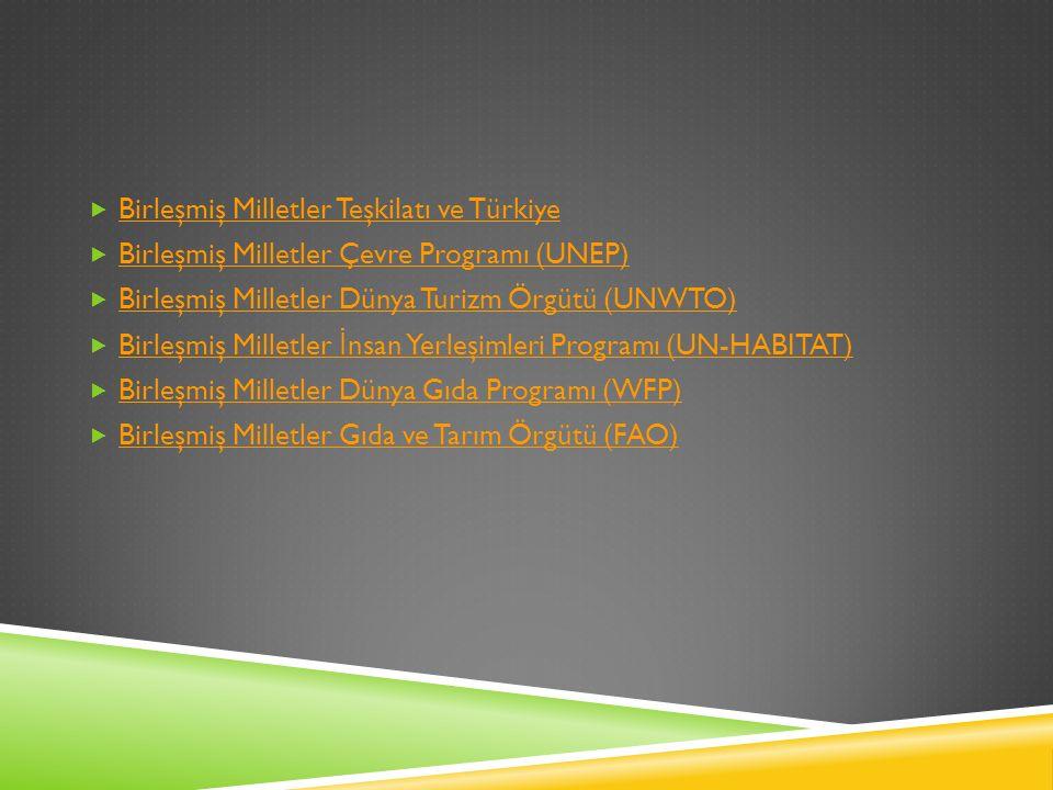  Birleşmiş Milletler Teşkilatı ve Türkiye Birleşmiş Milletler Teşkilatı ve Türkiye  Birleşmiş Milletler Çevre Programı (UNEP) Birleşmiş Milletler Çevre Programı (UNEP)  Birleşmiş Milletler Dünya Turizm Örgütü (UNWTO) Birleşmiş Milletler Dünya Turizm Örgütü (UNWTO)  Birleşmiş Milletler İ nsan Yerleşimleri Programı (UN-HABITAT) Birleşmiş Milletler İ nsan Yerleşimleri Programı (UN-HABITAT)  Birleşmiş Milletler Dünya Gıda Programı (WFP) Birleşmiş Milletler Dünya Gıda Programı (WFP)  Birleşmiş Milletler Gıda ve Tarım Örgütü (FAO) Birleşmiş Milletler Gıda ve Tarım Örgütü (FAO)