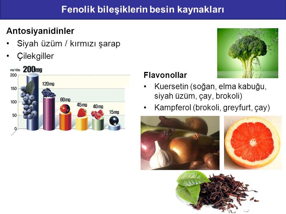 Fenolik bileşiklerin besin kaynakları Antosiyanidinler Siyah üzüm / kırmızı şarap Çilekgiller Flavonollar Kuersetin (soğan, elma kabuğu, siyah üzüm, ç