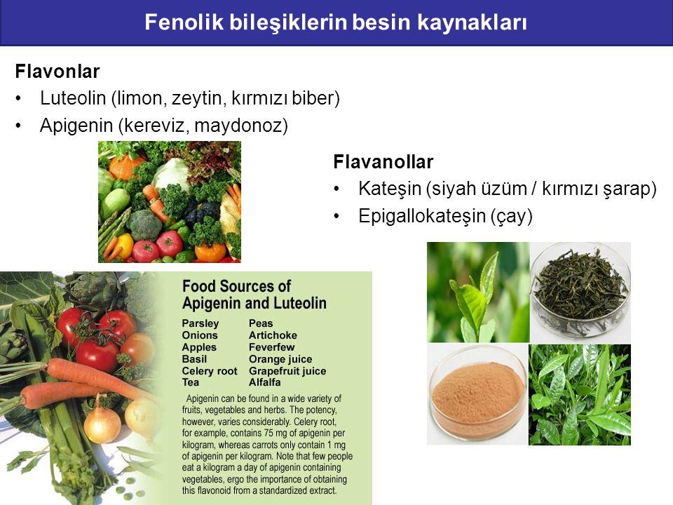Fenolik bileşiklerin besin kaynakları Flavonlar Luteolin (limon, zeytin, kırmızı biber) Apigenin (kereviz, maydonoz) Flavanollar Kateşin (siyah üzüm /