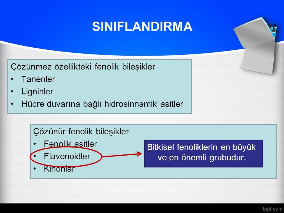 SINIFLANDIRMA Çözünmez özellikteki fenolik bileşikler Tanenler Ligninler Hücre duvarına bağlı hidrosinnamik asitler Çözünür fenolik bileşikler Fenolik