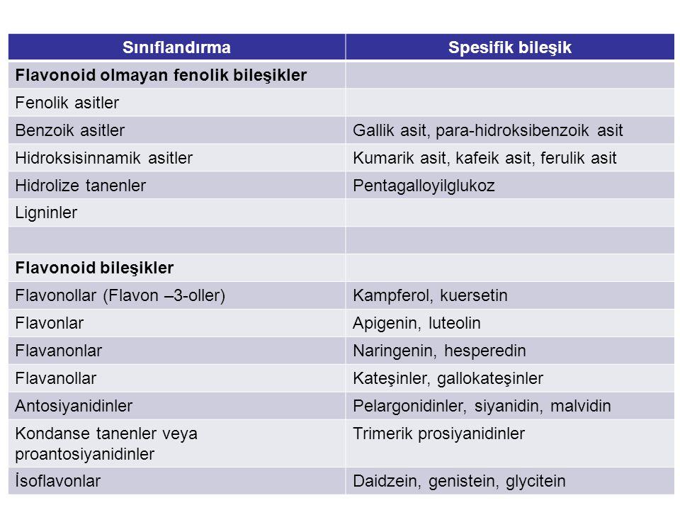 SınıflandırmaSpesifik bileşik Flavonoid olmayan fenolik bileşikler Fenolik asitler Benzoik asitlerGallik asit, para-hidroksibenzoik asit Hidroksisinna