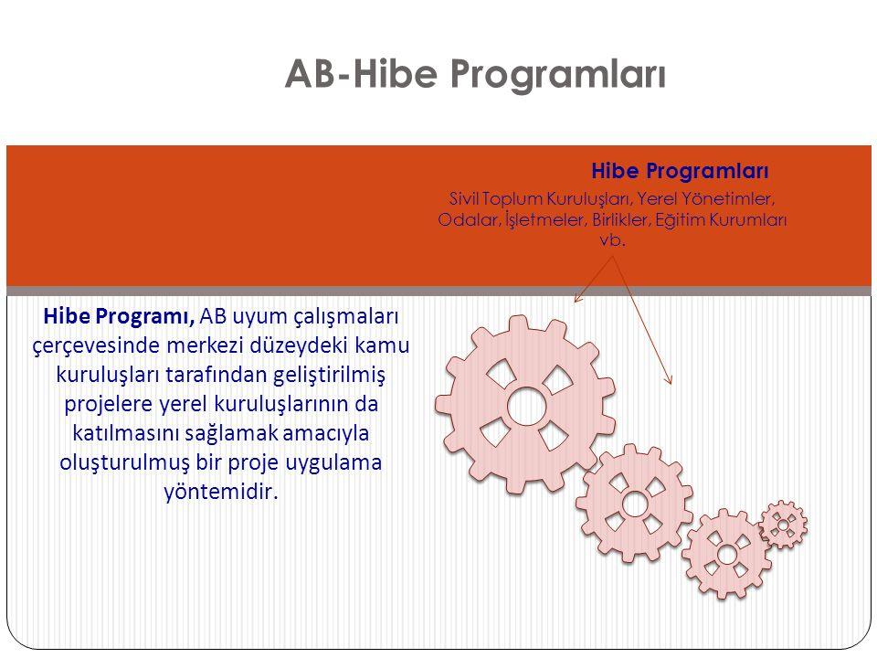AB-Hibe Programları Hibe Programları Sivil Toplum Kuruluşları, Yerel Yönetimler, Odalar, İşletmeler, Birlikler, Eğitim Kurumları vb. Hibe Programı, AB