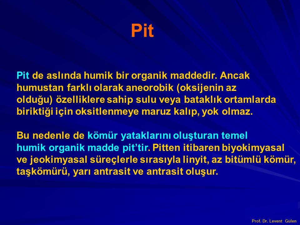 Prof. Dr. Levent Gülen Pit Pit de aslında humik bir organik maddedir. Ancak humustan farklı olarak aneorobik (oksijenin az olduğu) özelliklere sahip s