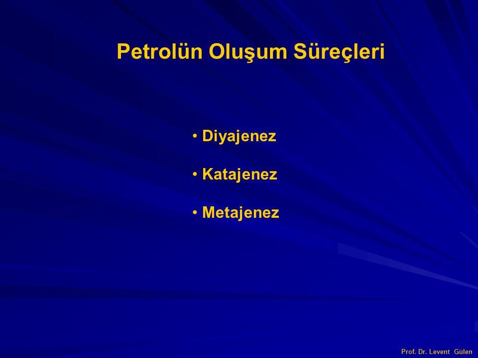 Prof. Dr. Levent Gülen Petrolün Oluşum Süreçleri Diyajenez Katajenez Metajenez